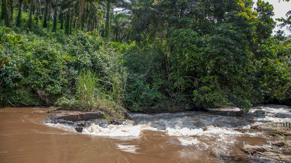 A river in Cameroon